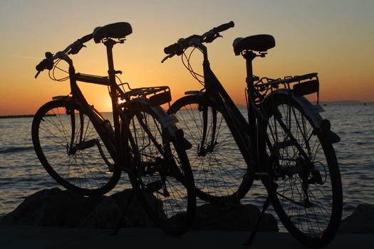 Trekkingräder vor Sonnenuntergang
